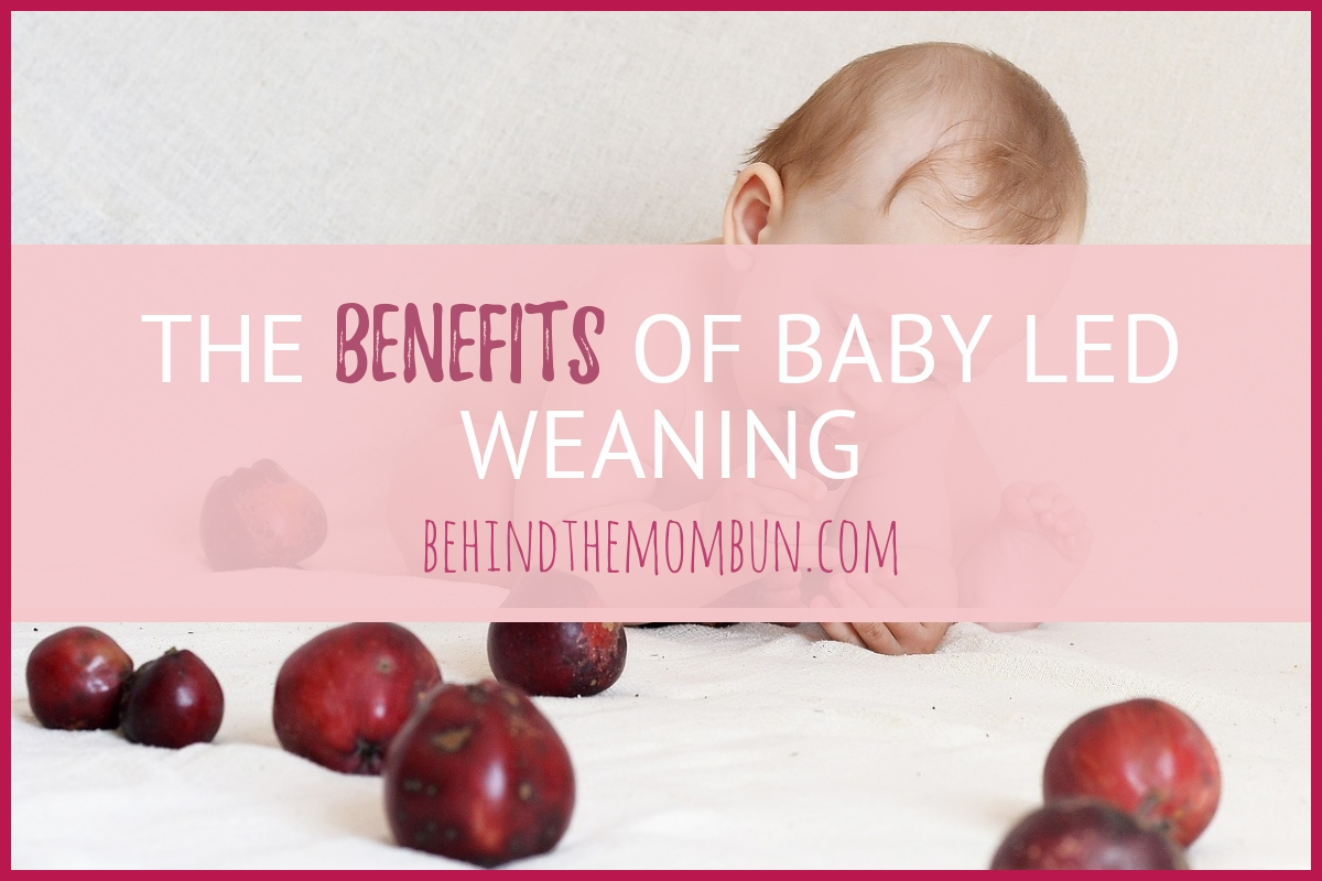 Seriously Simple Start to Baby Led Weaning