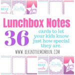 Lunchbox Notes-Pink, Purple, & Teal