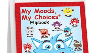 The Original Mood Flipbook for Kids; 20 Different Moods/Emotions